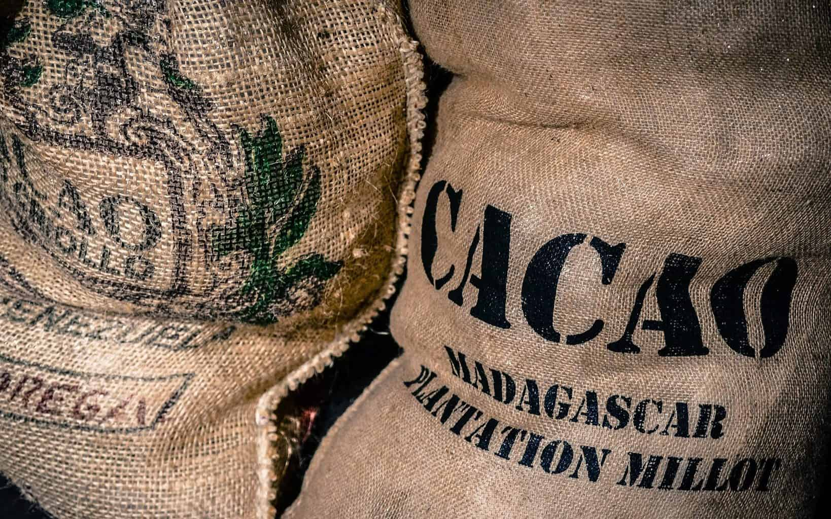 fair trade cacao bags