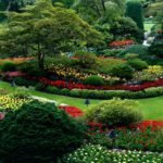 Is Landscaping Considered Agriculture