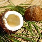 Is Coconut Wax Sustainable